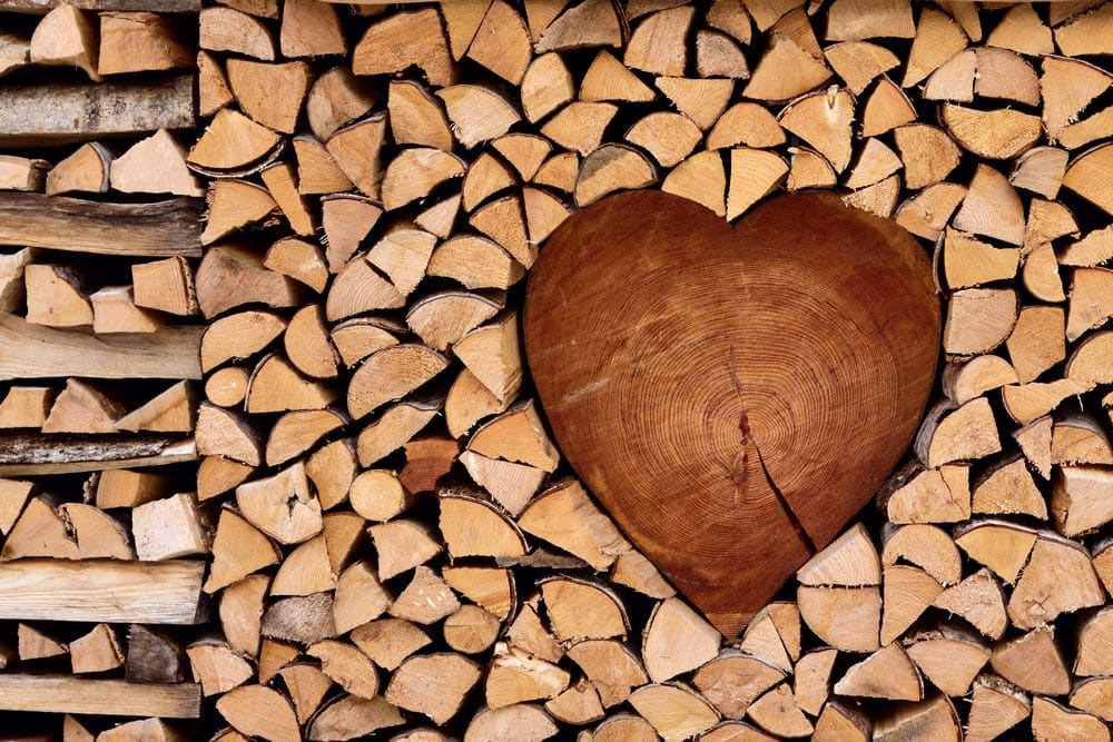wooden texture, nature background